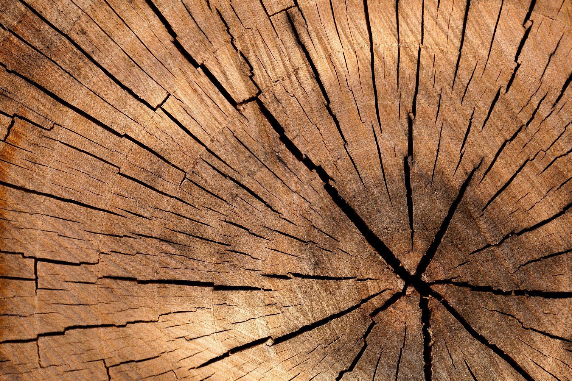 Arbeiten mit Holz oder Ton